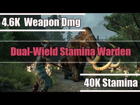 Dual-Wield Stamina Warden PvP Builds - Elder Scrolls Online: HOTR
