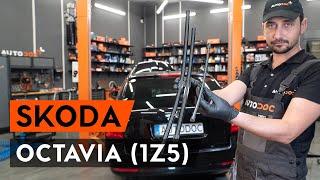 Τοποθέτησης Μάκτρο καθαριστήρα εμπρος και πίσω SKODA OCTAVIA Combi (1Z5): δωρεάν βίντεο