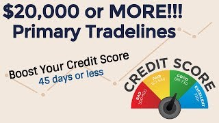 Up to $24,000 in Primary Tradelines - Boost your credit score in less than 45 Days