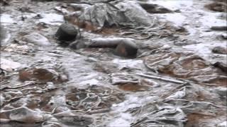 Химическая катастрофа в Рязани