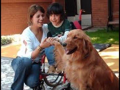 Resultado de imagen de niño con paralisis cerebral   con perro