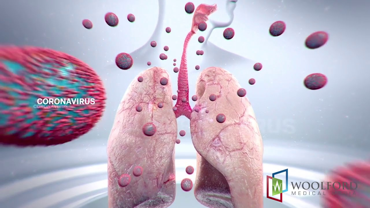 3D Medical Education Animations Demo Reel from Woolford Medical Media