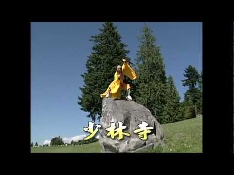 少林禪武學院 Shaolin Martial Arts Academy Master Yuan Vancouver Kung Fu Tai Chi Qigong