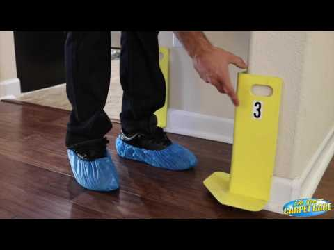 Carpet Cleaning Orlando Florida Process