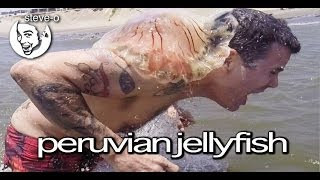 Peruvian Jellyfish Stunt - Steve-O(This made for a memorable day. My tour dates, merch, and greatest hits are at https://www.steveo.com. Subscribe to this awesome channel: ..., 2014-04-15T17:35:46.000Z)