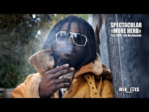 SPECTACULAR - MORE HERB - ZENZILÉ RIDDIM - IRIE ITES RECORDS mp3