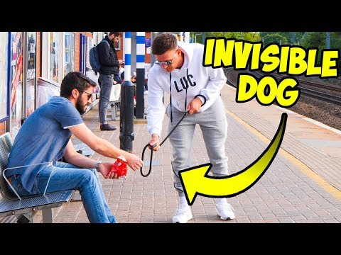 THE INVISIBLE DOG PRANK (crazy reactions)