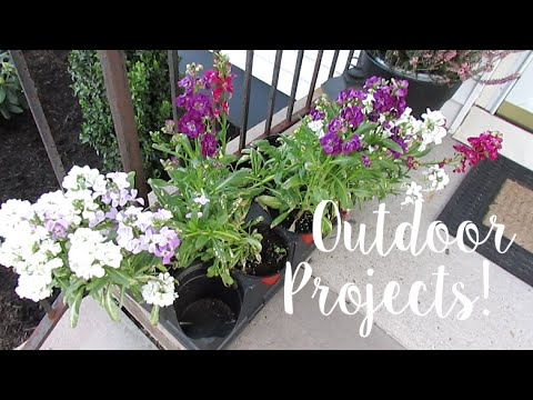 VLOG: Outdoor Projects!