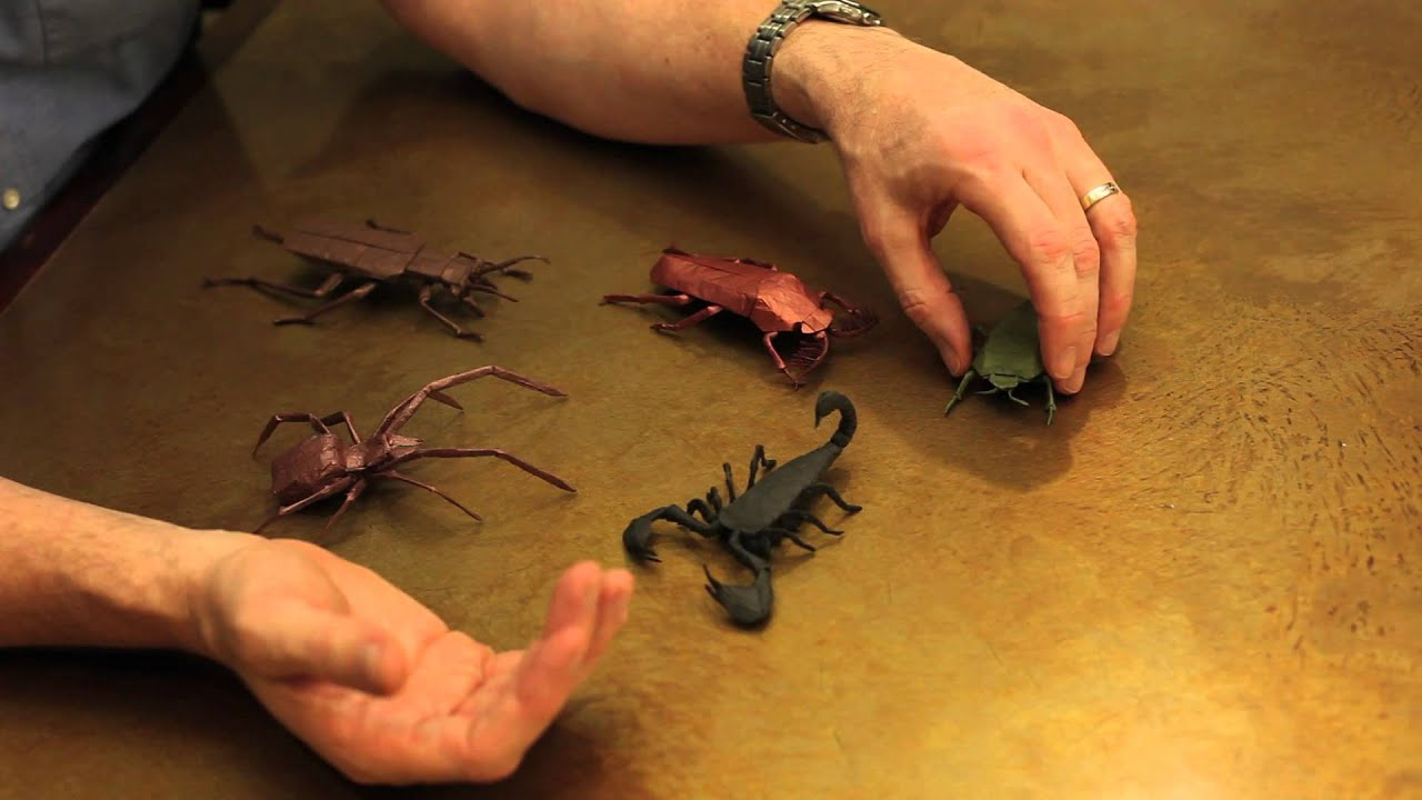 Robert Lang's Origami Insects - YouTube - photo#37