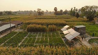 The Chakhaji Model in Bihar, India - Catalyzing 'Buyer-Friendly' Solar Irrigation Service Markets