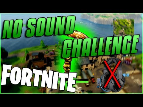 NO SOUND IN FORTNITE BATTLE ROYALE!! -} INTERACTIVE STREAMER {-