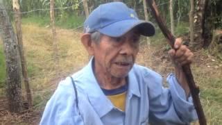 Milpa Nahuizalco, Territorio Ancestral Nahuat Pipil