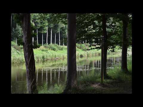 nature Belgium