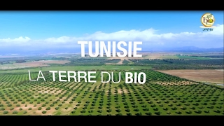 Tunisie: La Terre du Bio