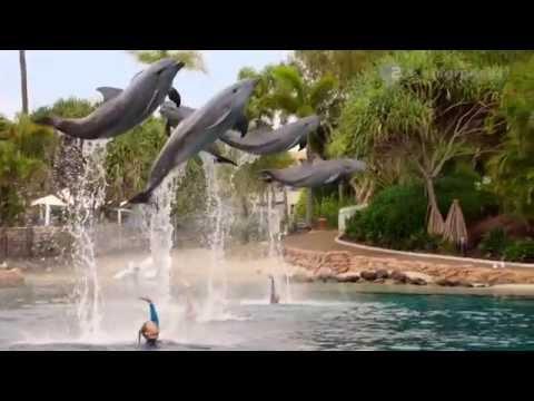Mako mermaids season 2 trailer 2014 youtube for Mako mermaids dailymotion