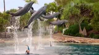 Mako Mermaids - Season 2 Trailer (2014)