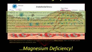 Misled and Misfed, What they don't want you to know about Magnesium