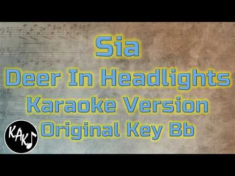 Sia - Deer In Headlights Karaoke Cover Instrumental Lyrics Original Key Bb