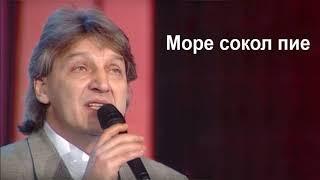 Goce Nikolovski - More sokol pie Гоце Николовски - Море сокол пие