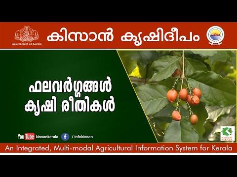 Cultivation of Fruit Plants - Episode - 626