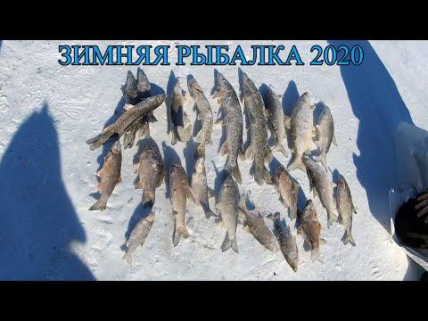 Зимняя рыбалка. Хапуга