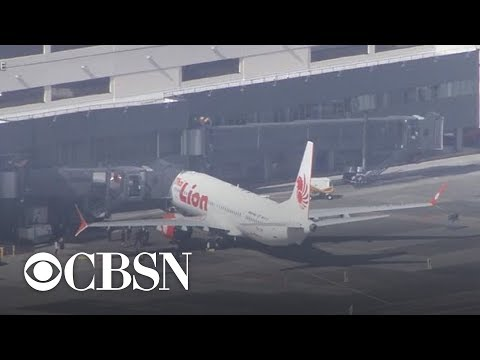"Probe finds Lion Air plane was not ""airworthy"" before crash"