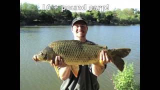 """17 Pound Common Carp Caught at Don Castro Lake! Pt 1"" by Verdugoadventures"