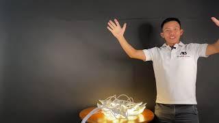 Đèn led chim trang trí nhà trang trí đám cưới rạp cưới đèn led thả trần trang trí vs Huy AB
