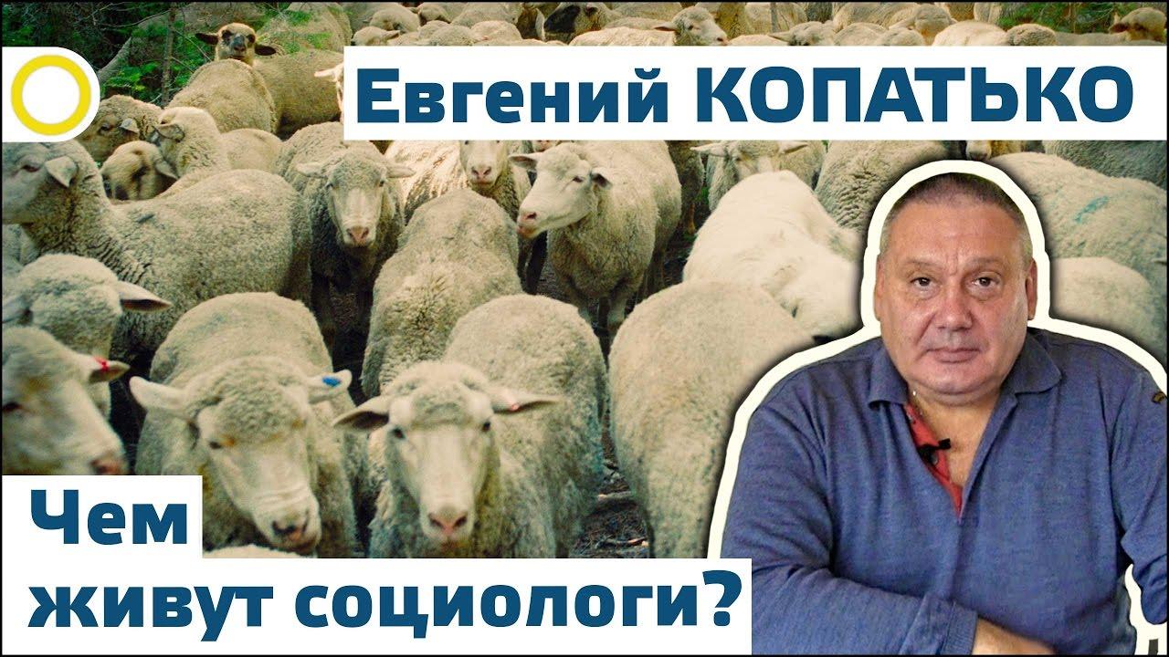 Евгений Копатько. Чем живут социологи? 02.10.2016 [РАССВЕТ]