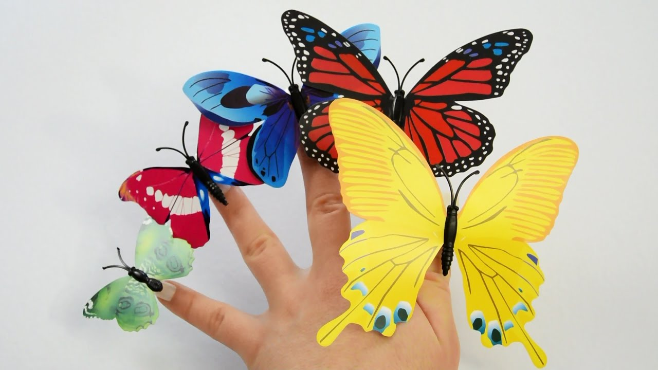 learn colors nail arts butterfly nails colours learn sizes teach