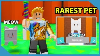 Roblox Developer Gave Me My Own Pet In This Game! - Roblox Cat Simulator