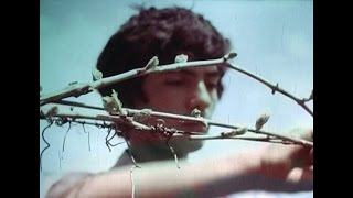 Свой огород и поле за ним. Ростовская киностудия,1984г.