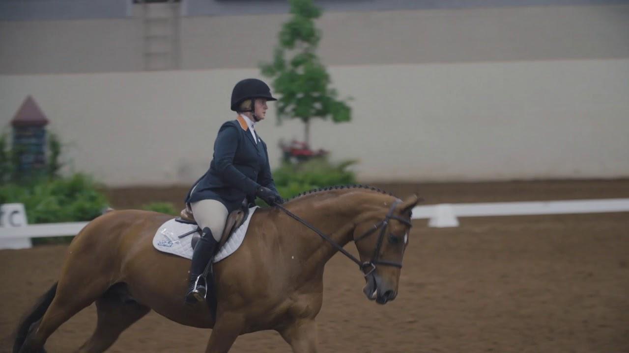 Auburn Equestrian Wins 2019 Ncea National Championship