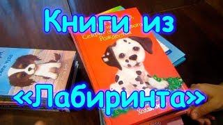 Обзор книг и учебников из Лабиринта. (01.19г.) Семья Бровченко.