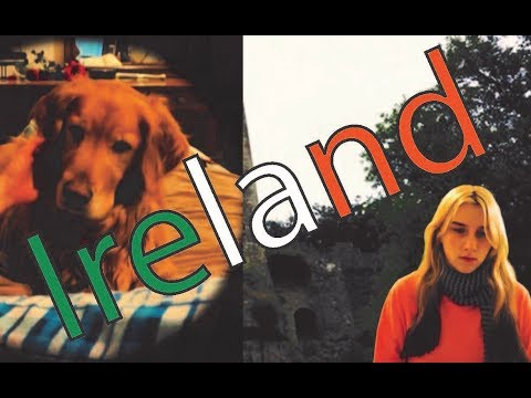 Ireland | Legally Blonde | Plus Apollo (Rufus) Interview :)