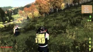 DayZ - Zombie Survival - Überlebensversuch #002 [3] - Auf ins Landesinnere!