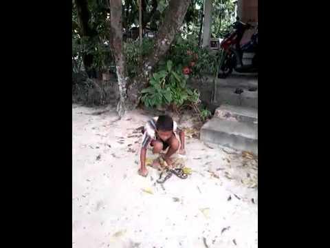 Tanjung balai karimun master