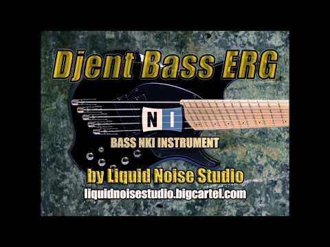 Reflections - An Artifact Bass Cover DjentBass ERG