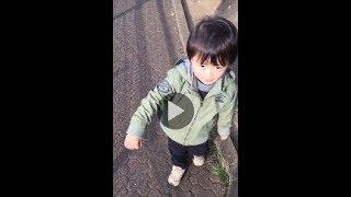 【引用元】https://ameblo.jp/ebizo-ichikawa/entry-12110739683.html A...