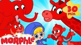 Morphle's Magic Animals - Tigers and Elephants | Mila and Morphle | Cartoons for Kids | Morphle TV