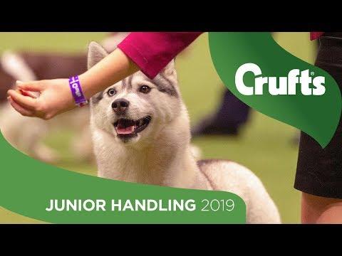 International Junior Handling Competition - Round 1 Part 2 | Crufts 2019