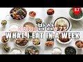 WHAT I EAT IN A WEEK 73 Korean Mukbang (food diary) Korean food / 이제이레시피