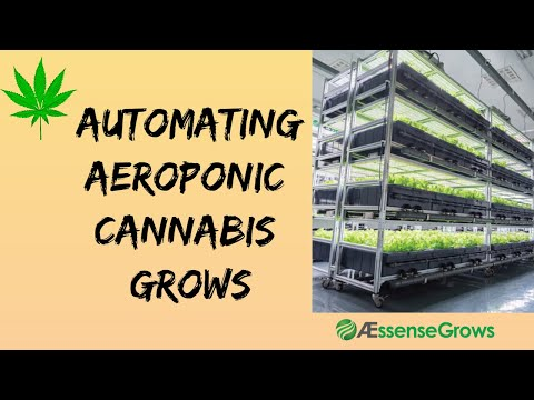 Intelligent-Cannabis-Growing-Systems-Aeroponics-#aescensecorp