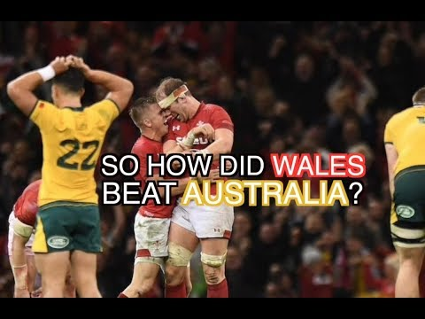 So How Did Wales Finally Beat The Wallabies?   Wales 9-6 Australia   The Squidge Report