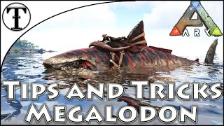 Fast Megalodon Taming Guİde :: Ark : Survival Evolved Tips and Tricks