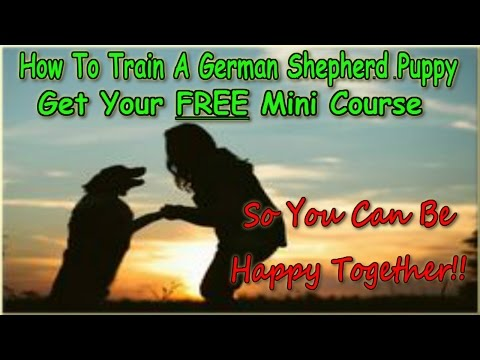 how-to-train-a-german-shepherd-puppy-free-▶-instant-download-◀-training-course-on-german-shepherd-:)