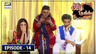 Barfi Laddu Episode 14 | 29th August 2019 | ARY Digital Drama