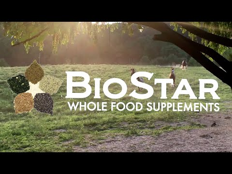 BioStar US - Whole Food Supplements