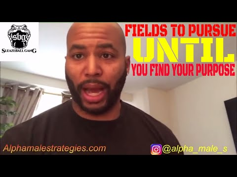 Fields To Pursue Until You Find Your Purpose (Alpha Male Strategies)