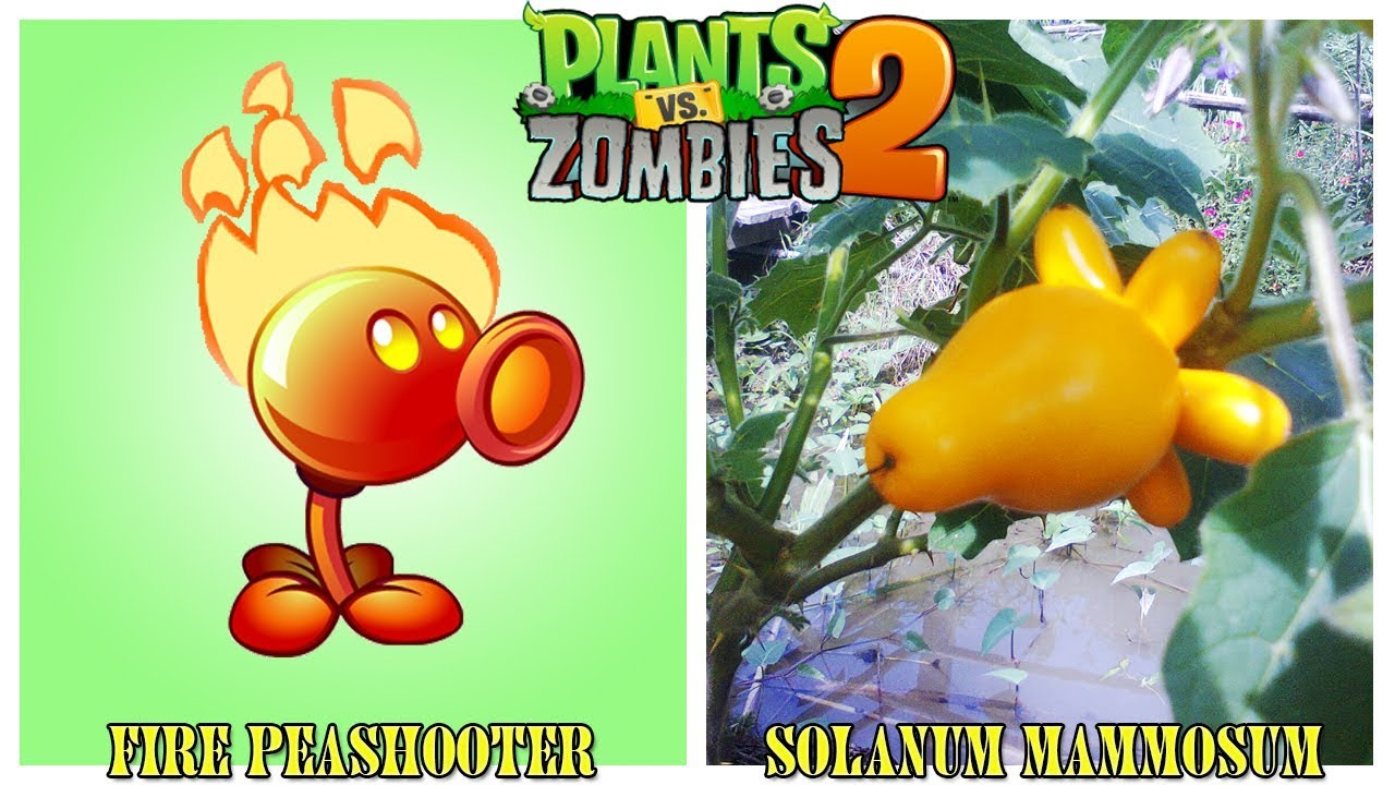 Plants Vs Zombies Characters In Real Life New 2018 Youtube